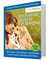 Pet Allergies eBook
